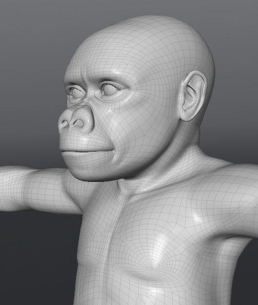 GorillaWork130.JPG