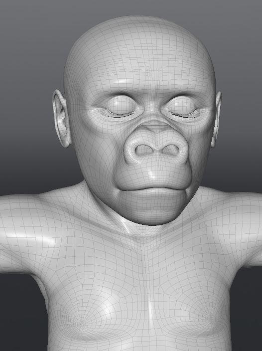 GorillaWork134.JPG