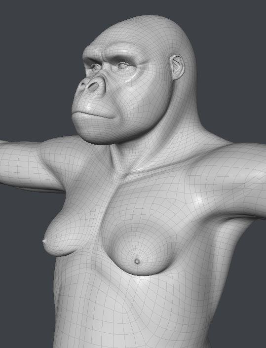 GorillaWork150.JPG