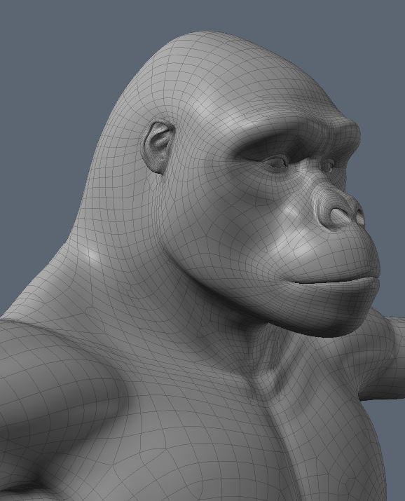 GorillaWork2.JPG