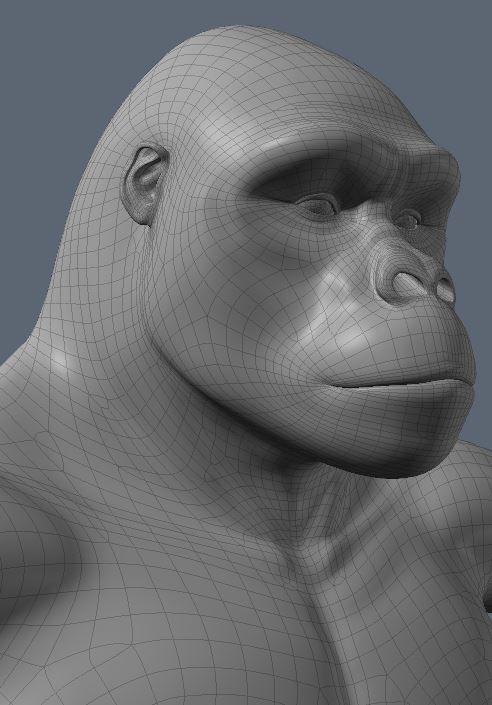GorillaWork3.JPG