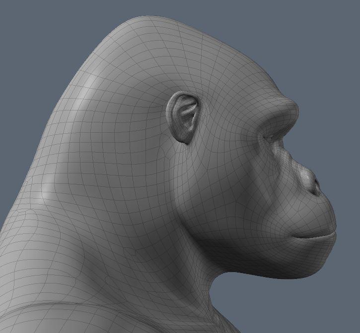GorillaWork4.JPG