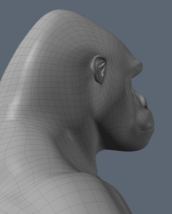 GorillaWork5.JPG