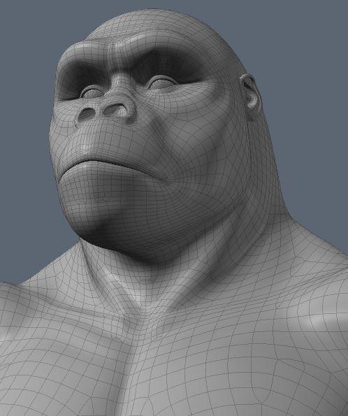 GorillaWork6.JPG