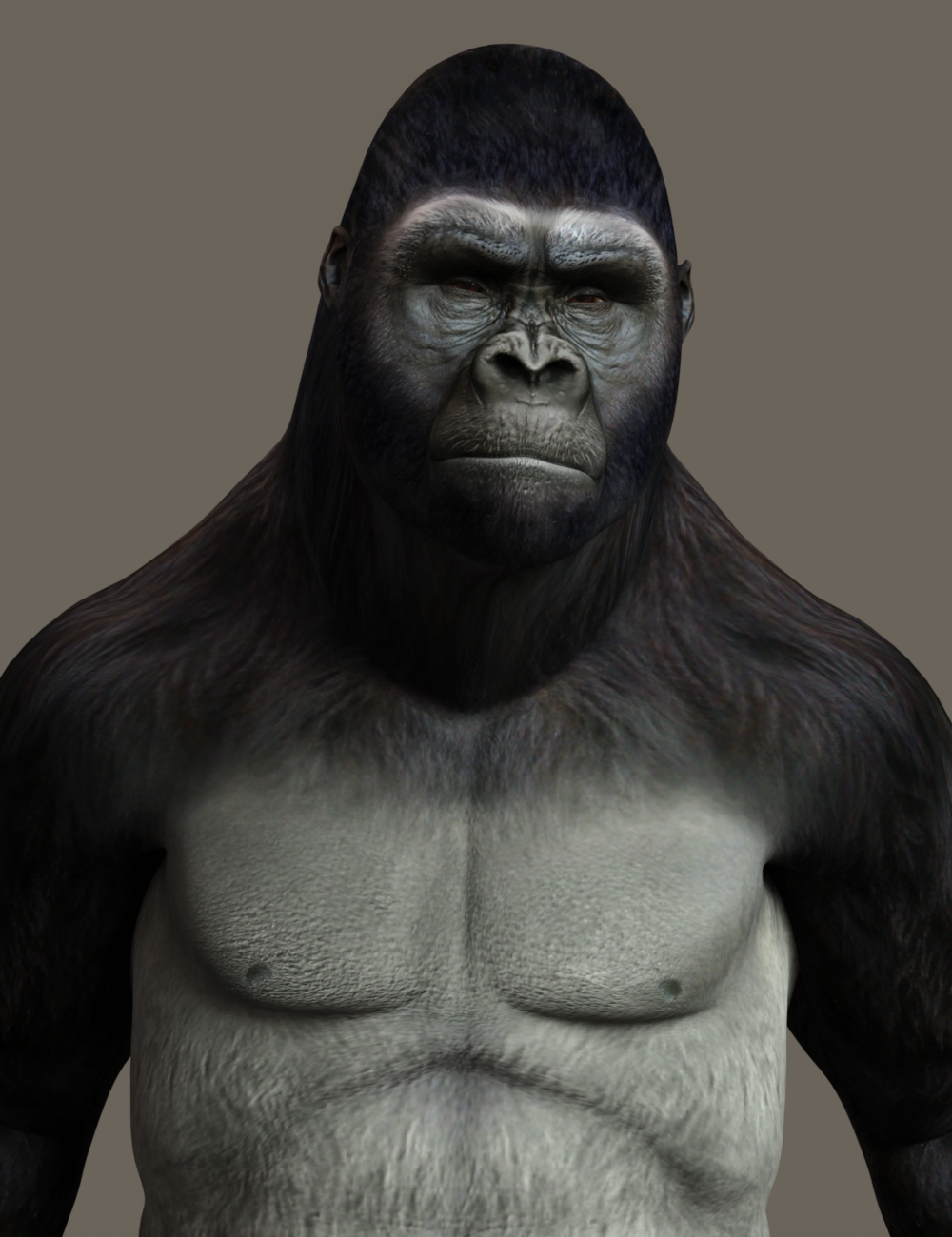 GorillaWork68c.jpg