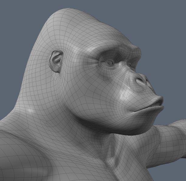 GorillaWork73.JPG