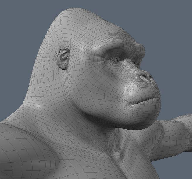 GorillaWork74.JPG