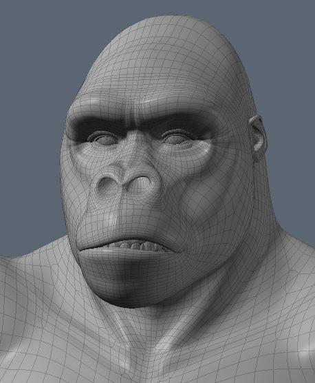 GorillaWork76.JPG