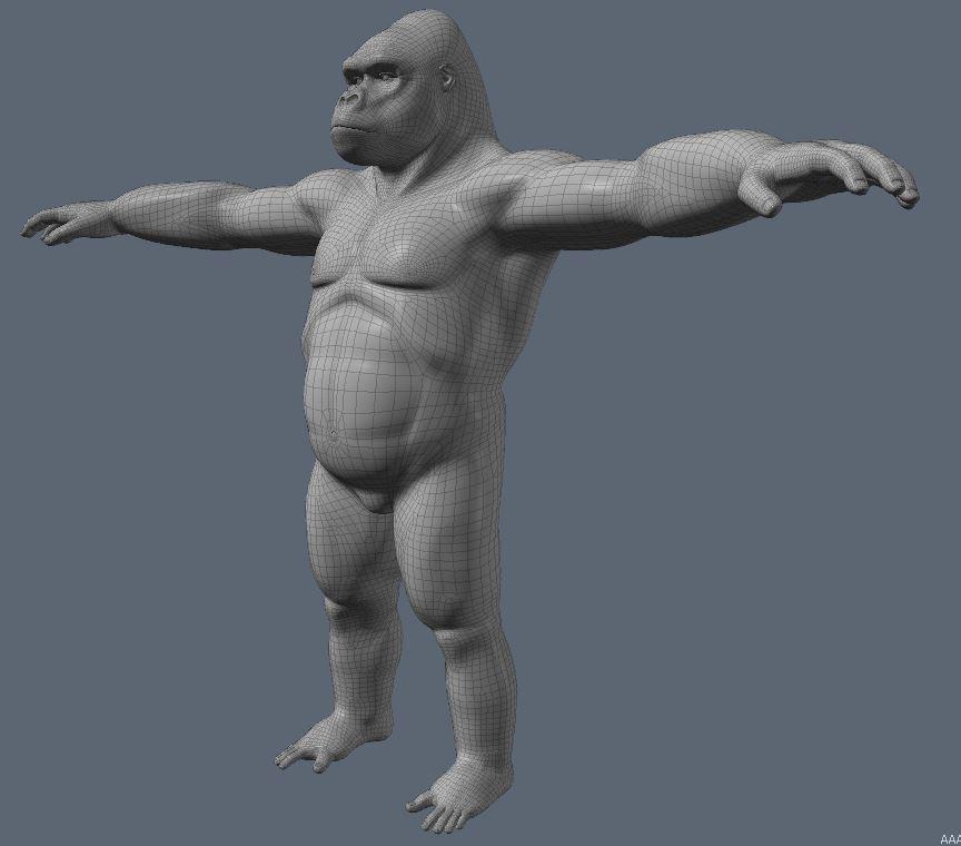 GorillaWork78.JPG