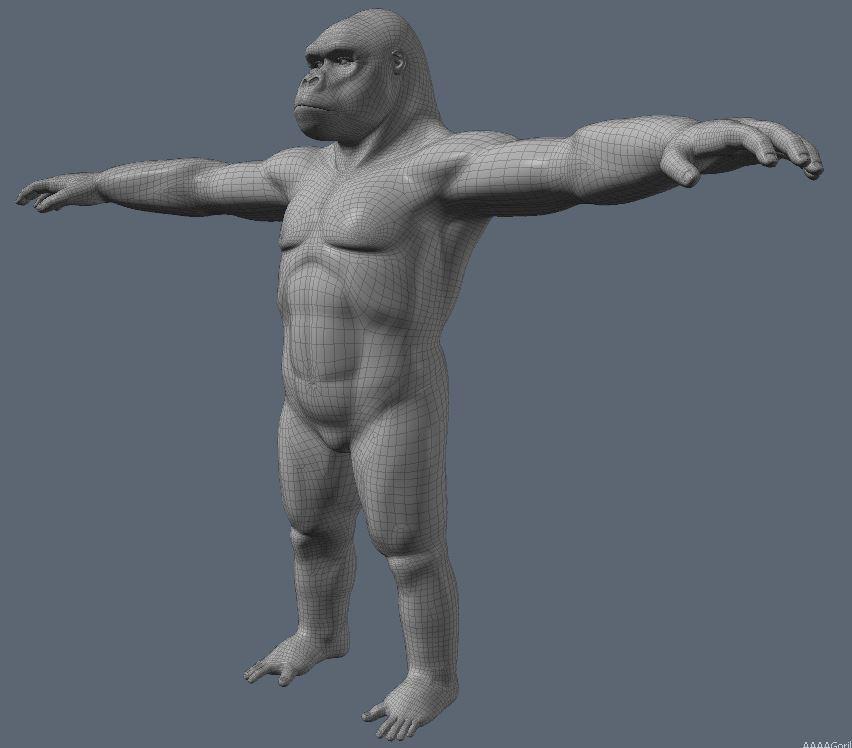 GorillaWork79.JPG