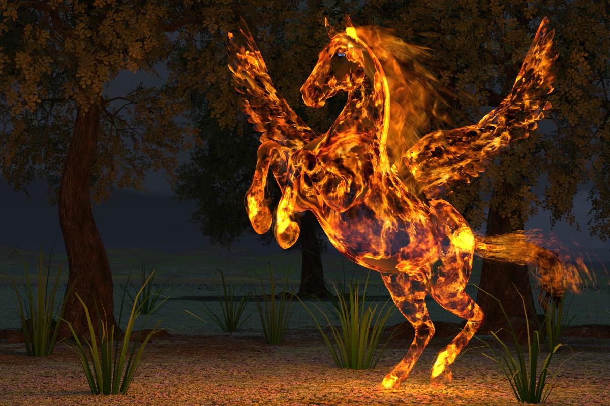 Harry wildfire rdna.jpg