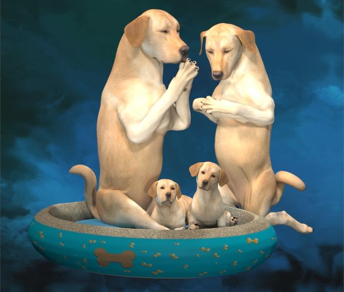 HIVEWIRE DOGS PRAYER.jpg