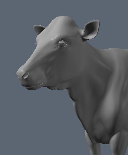 Holstein4.JPG