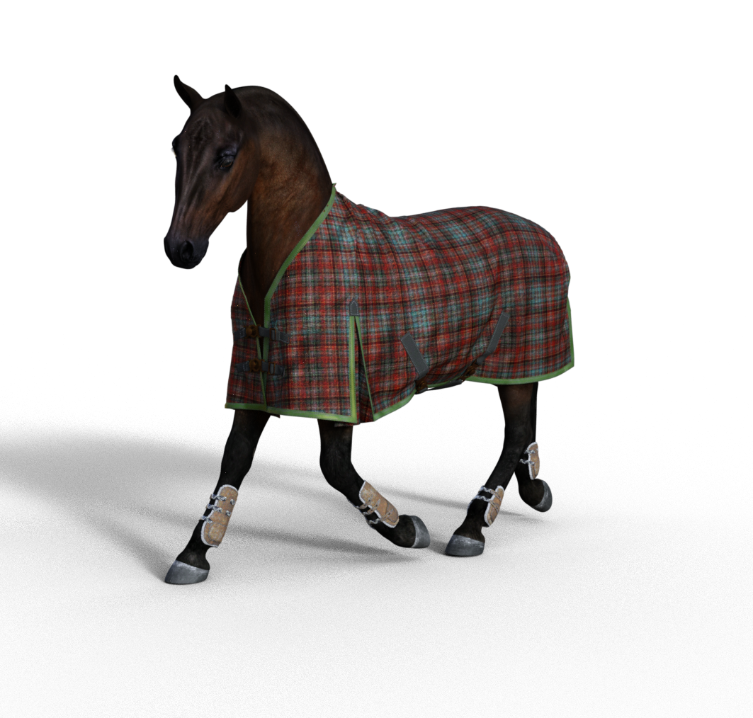 horse1.png