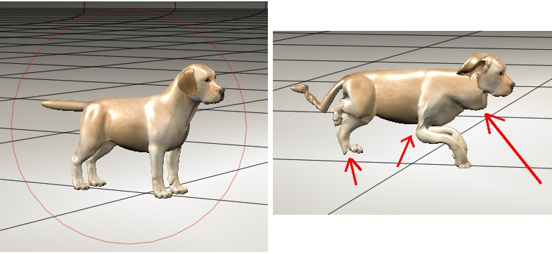 hw-pup-test.jpg