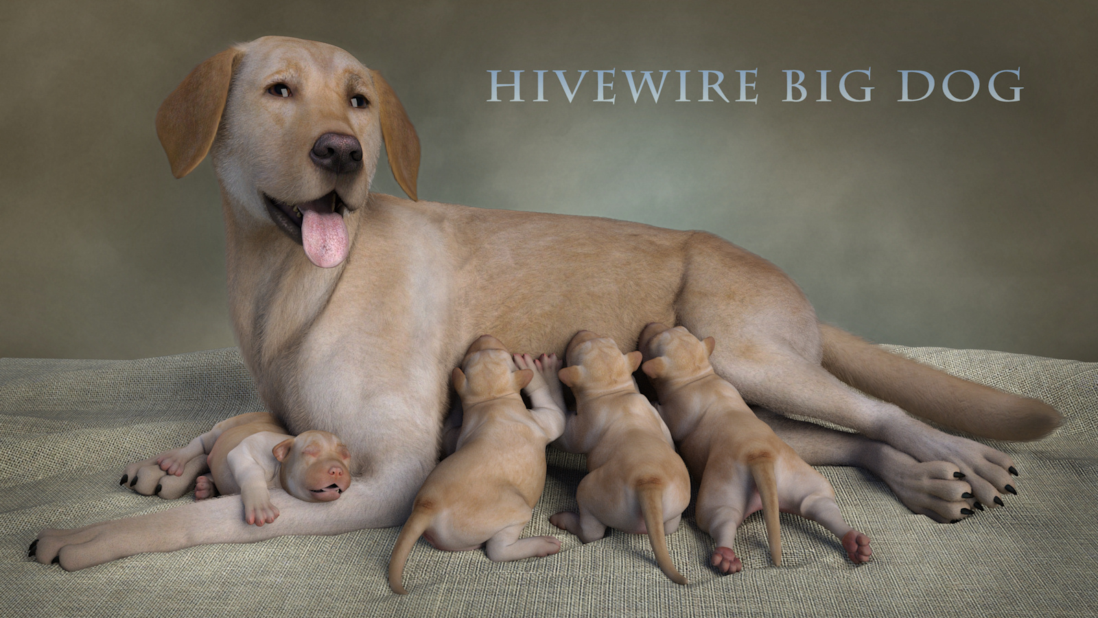 HWDogNewbornPuppies.jpg