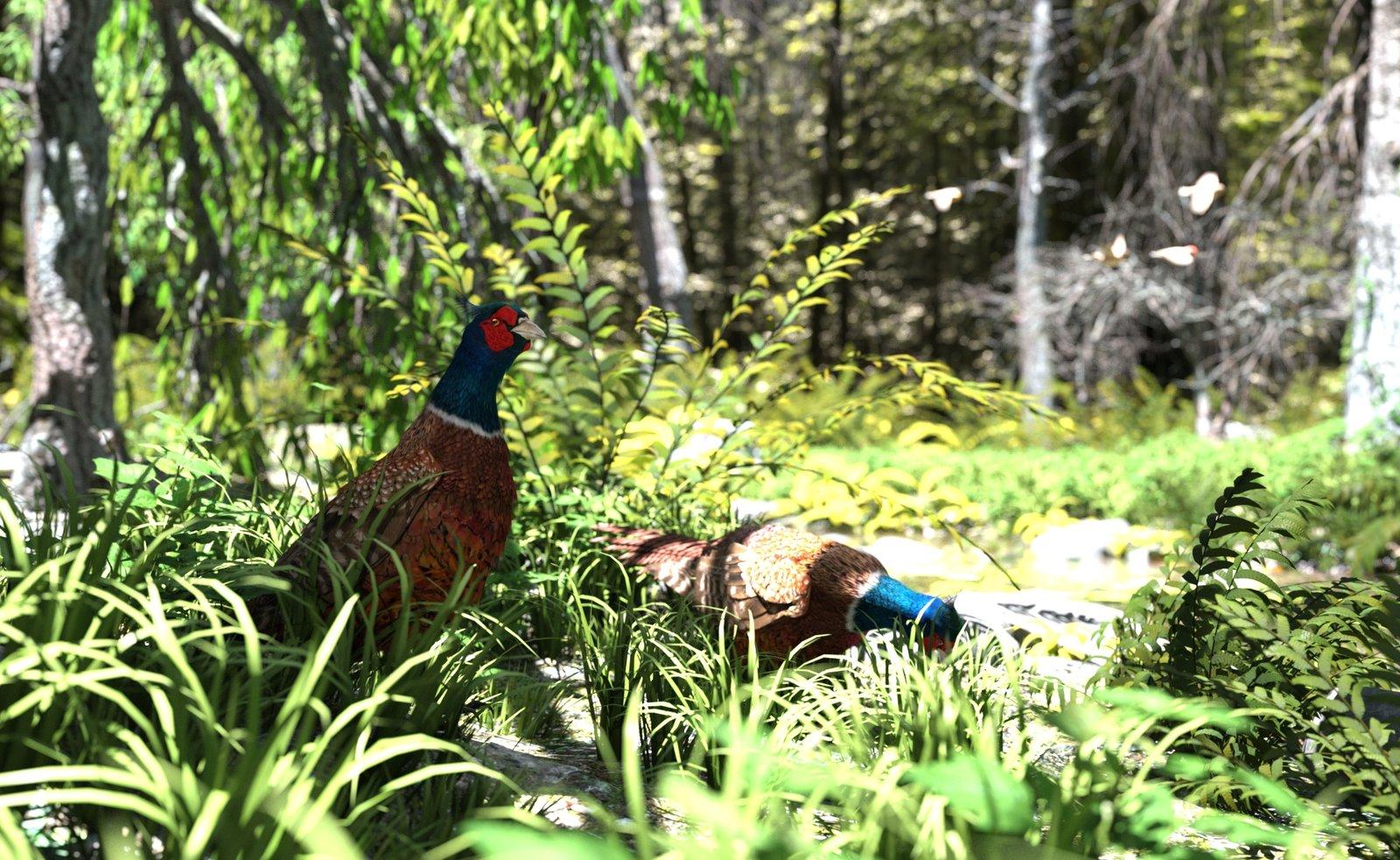 Iray Pheasant.jpg