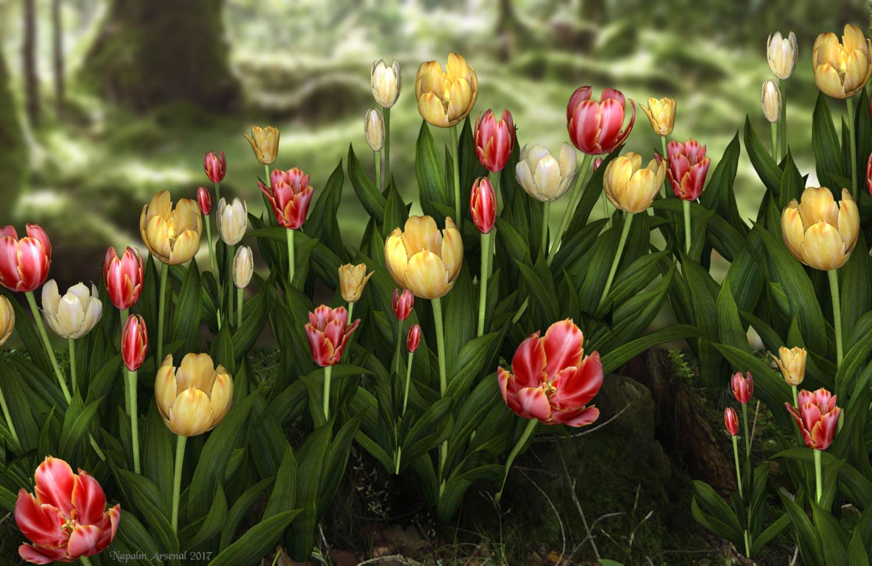 Iray Tulips copy87.jpg