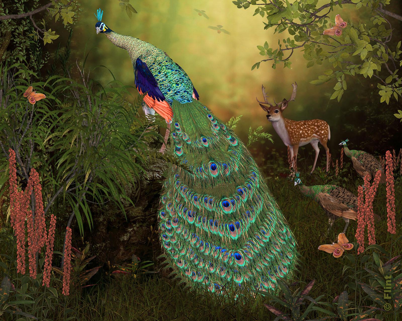 Jungle Jewel.jpg