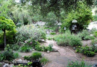 Ken's Garden.jpg