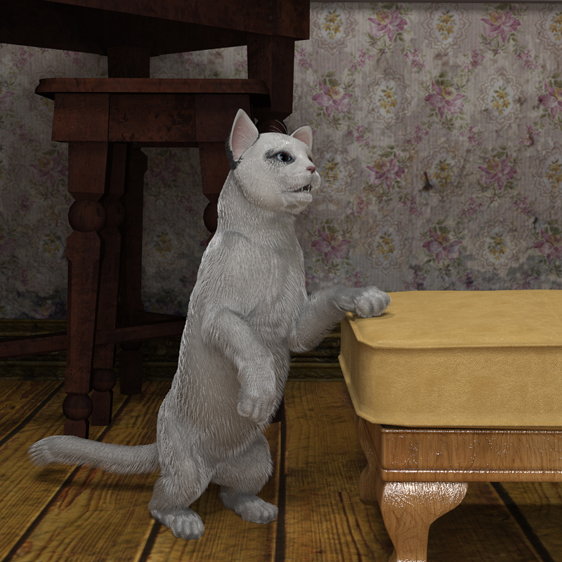 KittyTrueHairWhite.jpg