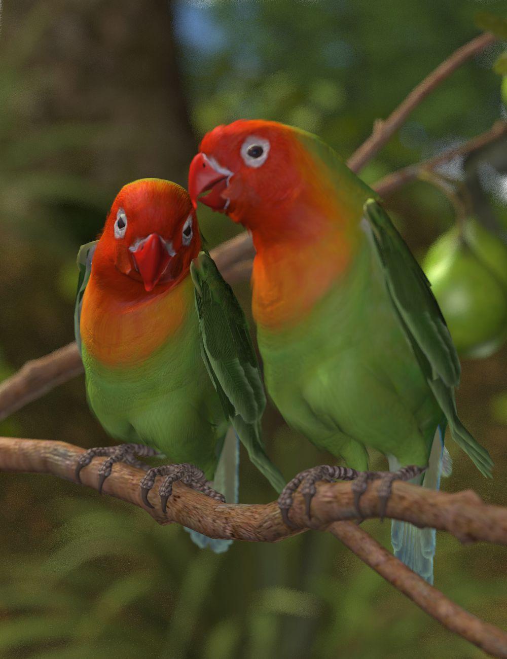 Lilian's Lovebirds.jpg