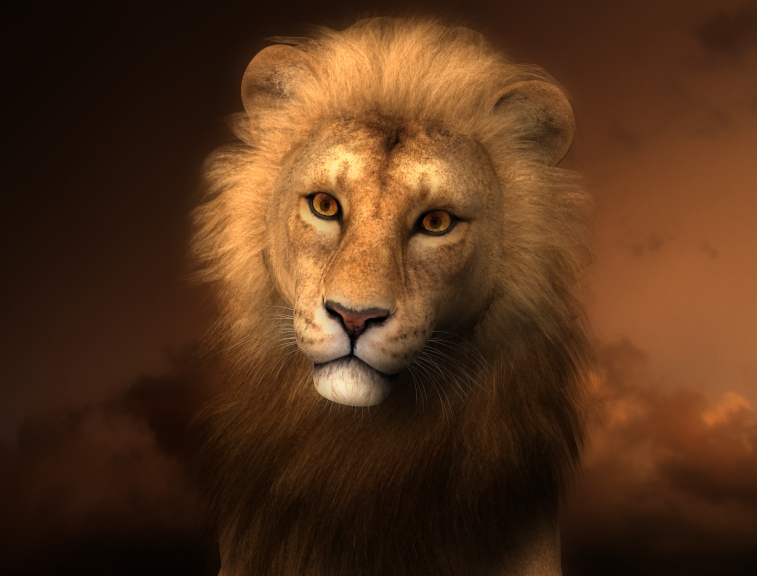 Lion-dark-sky-enhanced.jpg