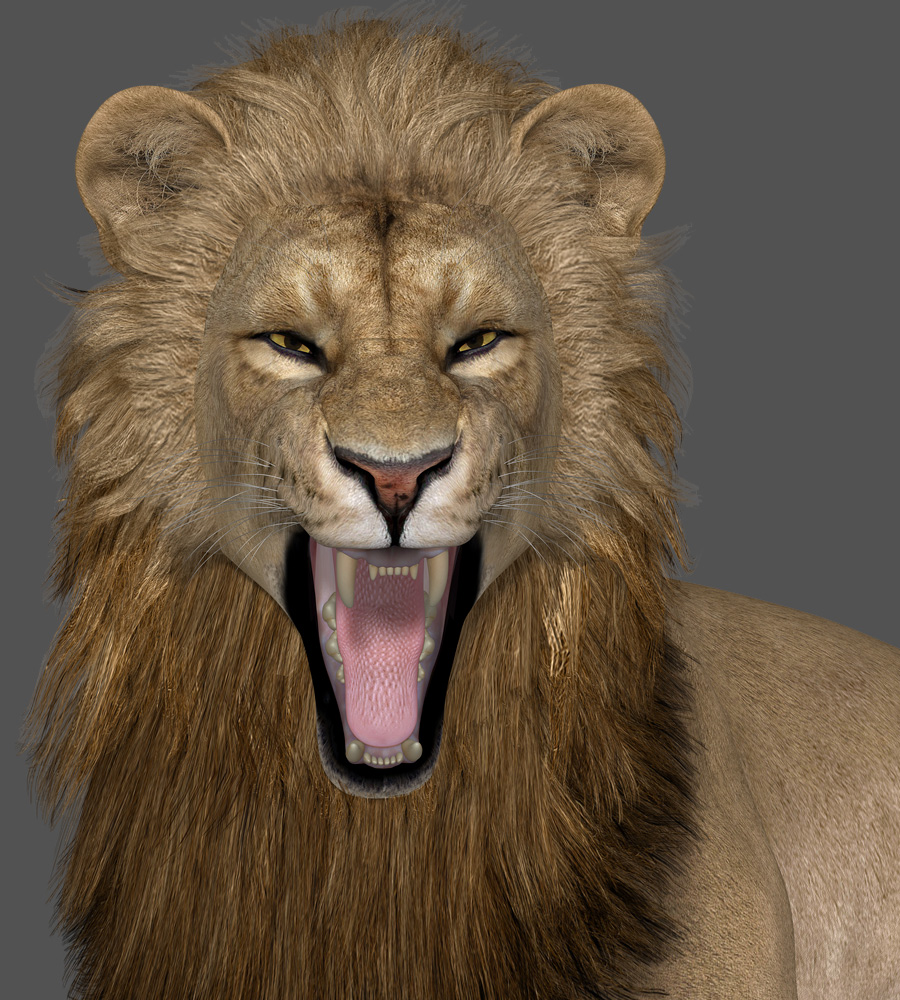 Lion-RoarAndYawn-1.jpg