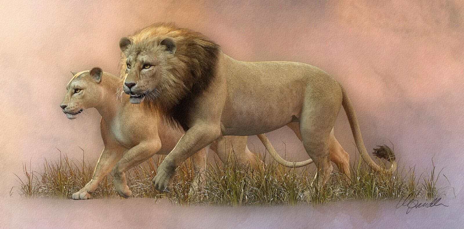 LionLionessVignette.jpg