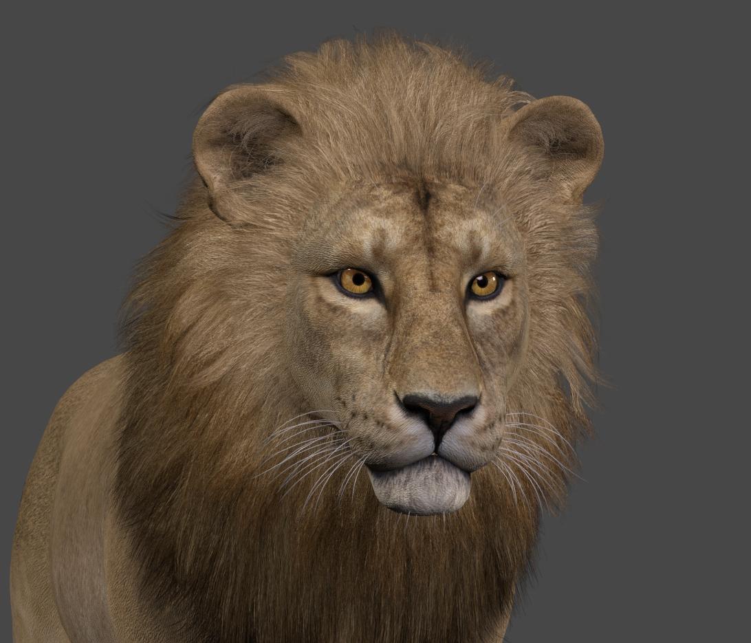LionManeModeledSF3718.jpg