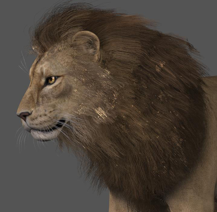 LionManeSF1.jpg