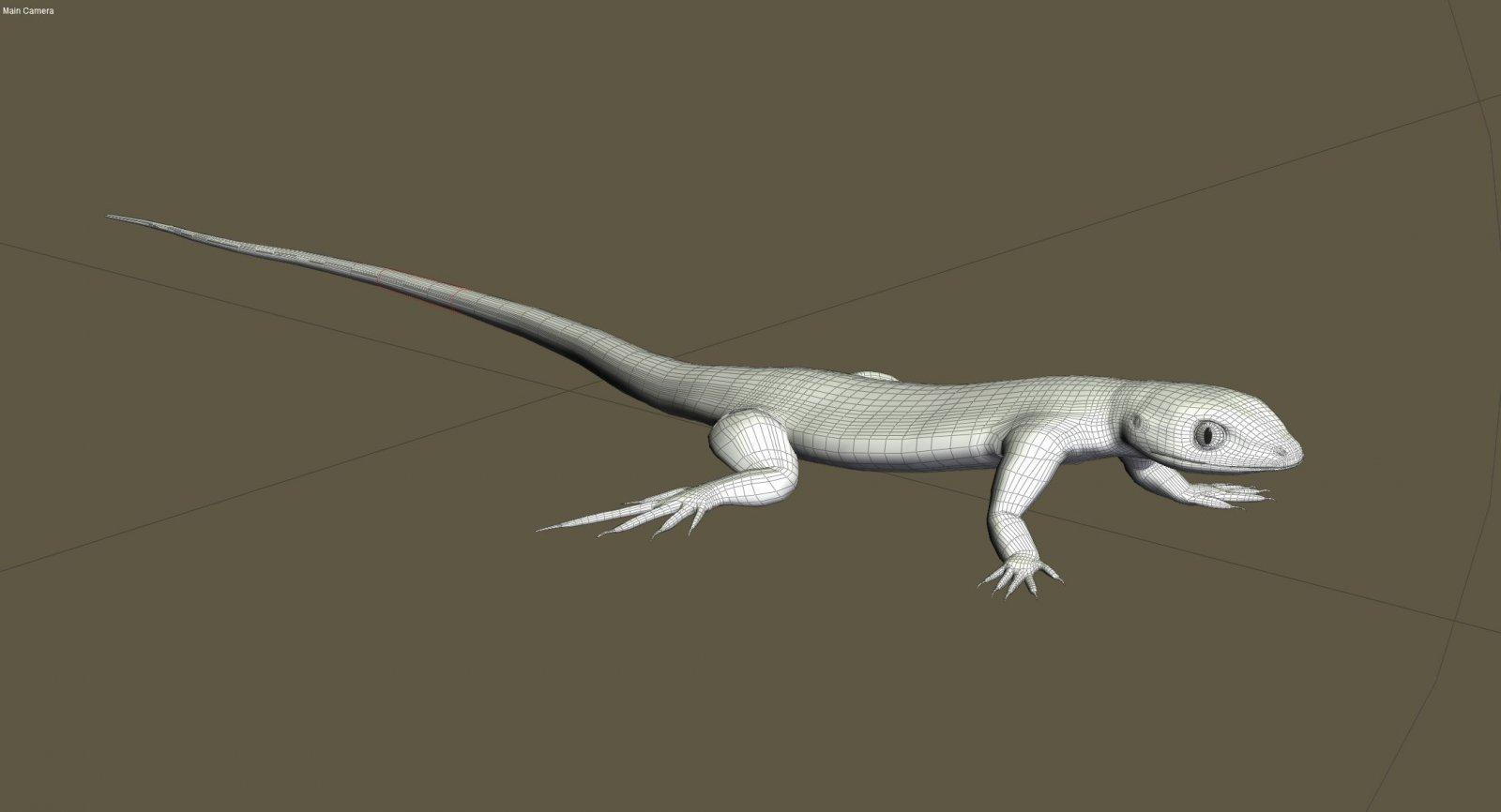 lizardpushup.jpg