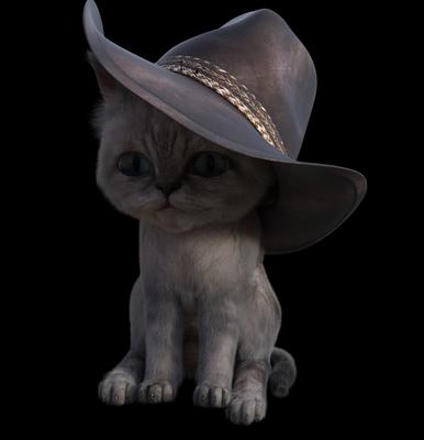 Moshi---Meowdy.jpg