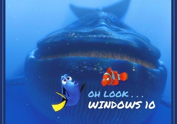 NEMO-WINDOWS10.jpg