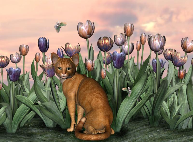 Orange Purple 2e.jpg