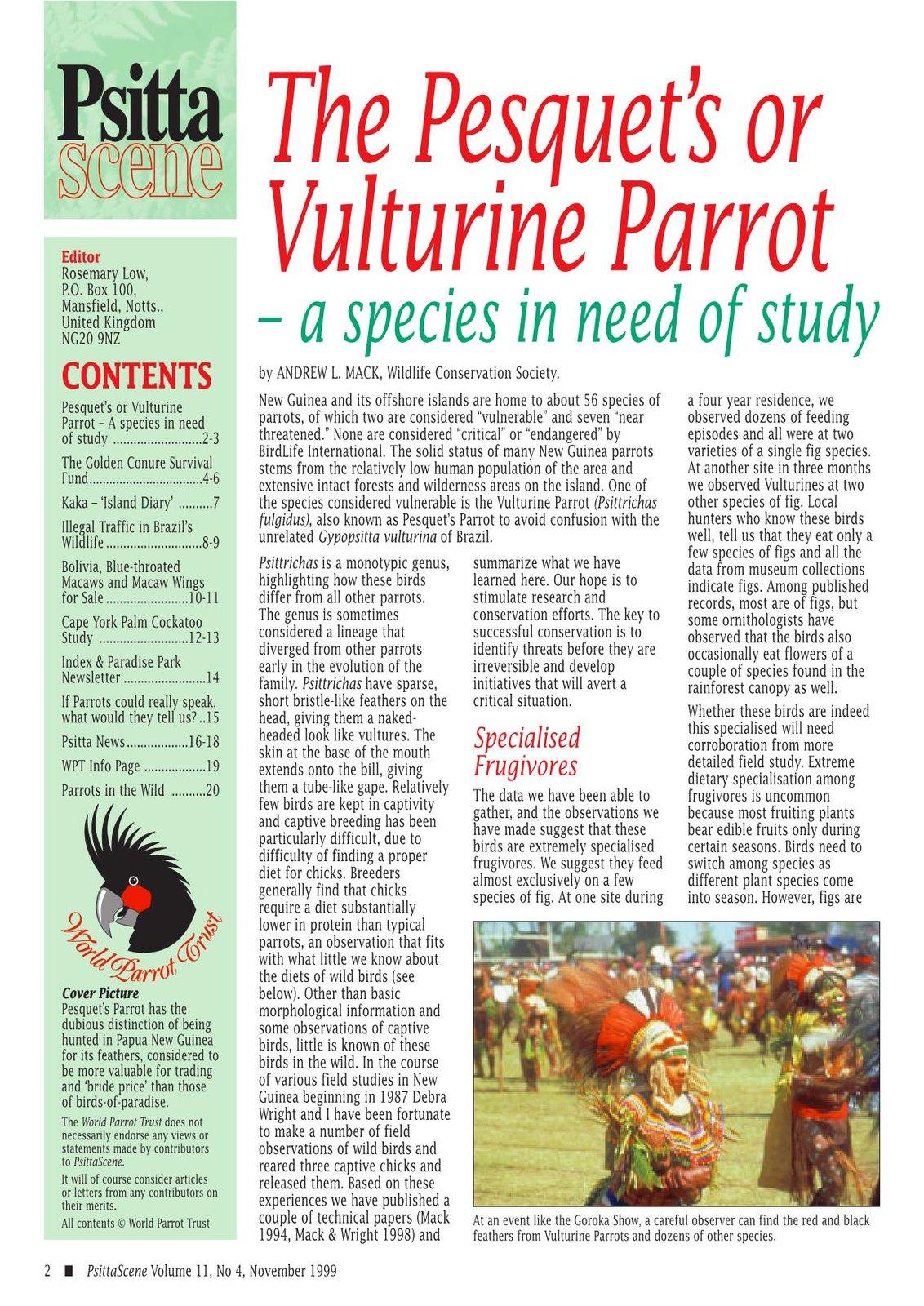 Pesquet's or Vulturine Parrot_3.jpg
