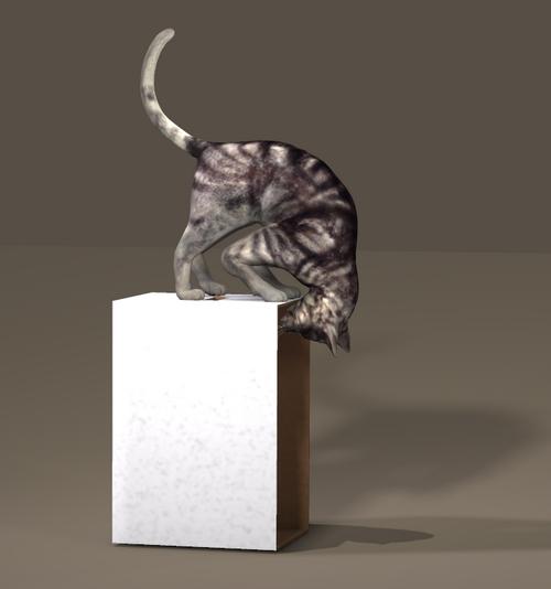 POSER CAT PEEK IN BOX.jpg