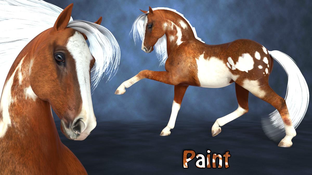 Promo1 paint.jpg