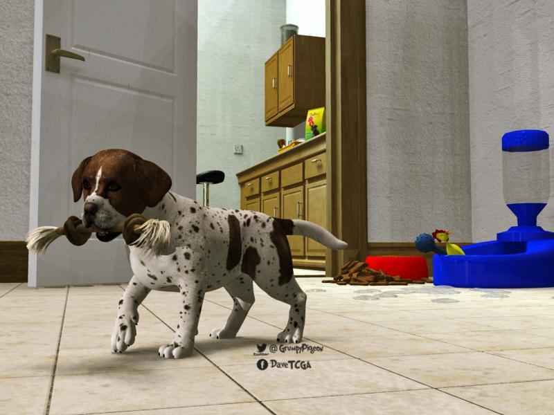 Puppy in Kitchen.jpg