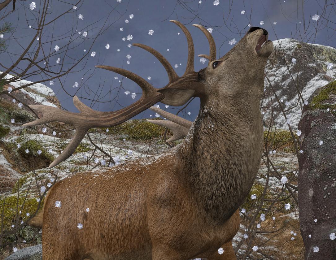 Red Deer Winter - Copy.jpg