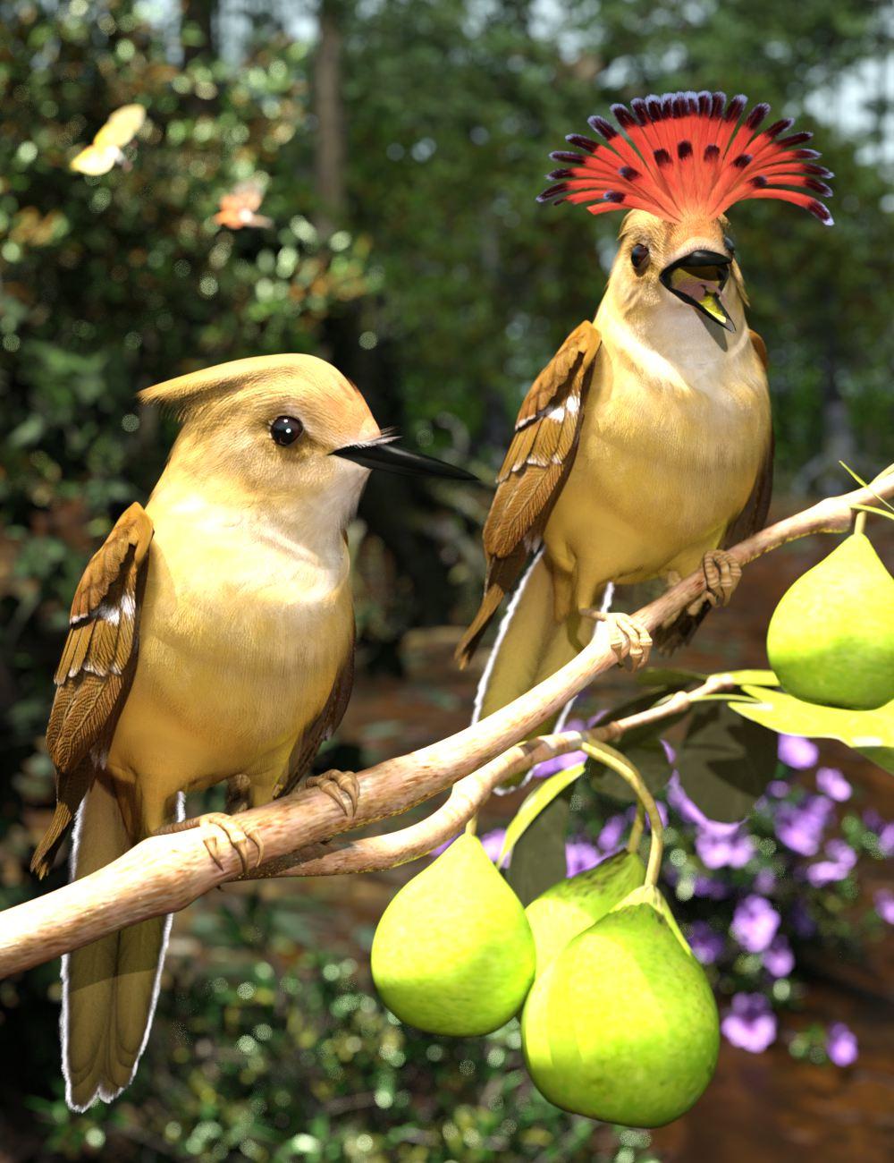 Royal Flycatchers ART.jpg