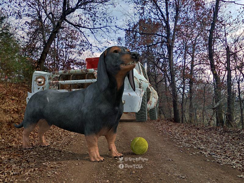 Sausage Hunt.jpg