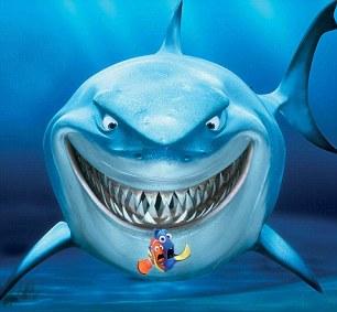 SharkGrin.jpg