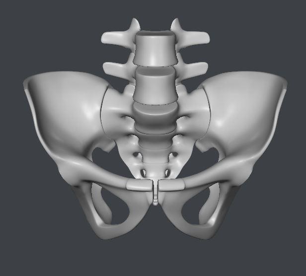 Skull112.JPG