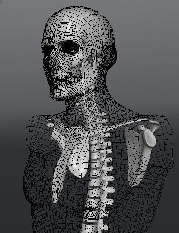 Skull136.JPG