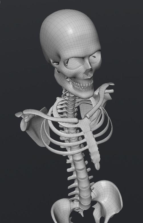Skull151.JPG