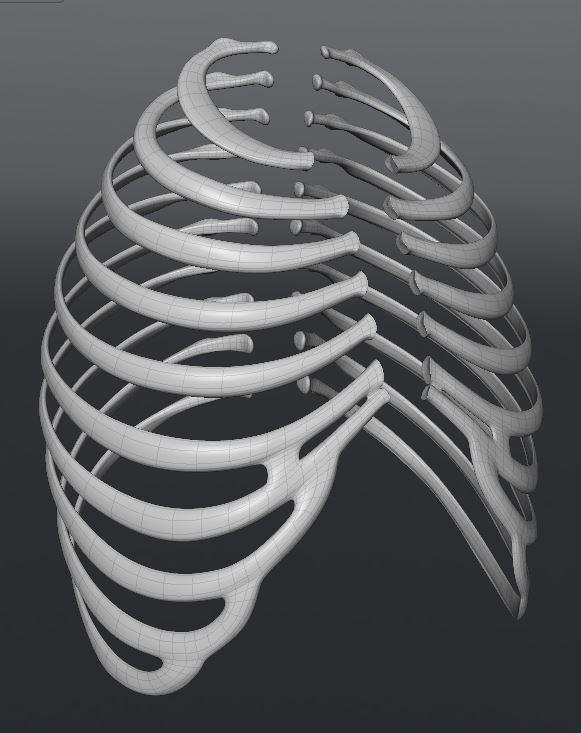 Skull156.JPG
