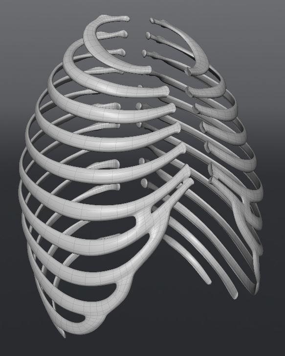 Skull166.JPG