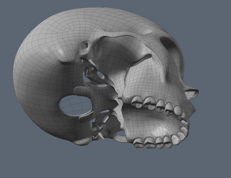 Skull18.JPG