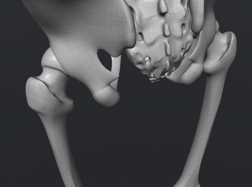 Skull188.JPG